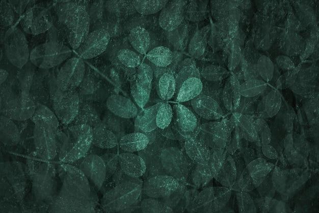 Toile de fond texturé motif feuille vert foncé