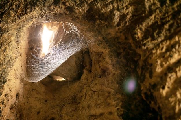 Toiles d'araignées denses dans une grotte avec la lumière du jour passant par le trou
