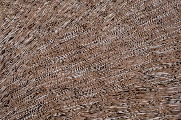 Le toit est fait par des lignes d'herbe brune.