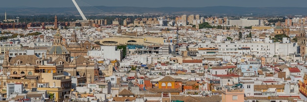 Sur les toits de la ville de séville panorama vue aérienne du haut de la cathédrale de sainte marie du siège, la cathédrale de séville, andalousie, espagne