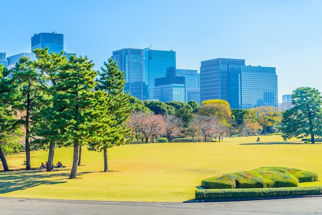 Tokyo cityscape horizon