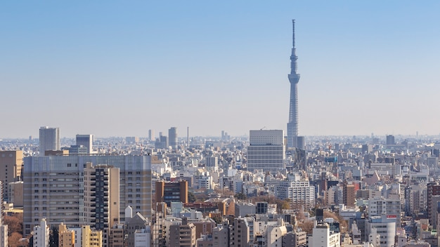 Tokyo, japon - 11 février 2016 : paysage urbain de tokyo avec tokyo skytree ou tokyo sky tree la plus haute structure du japon le 11 février 2016 à tokyo, japon.