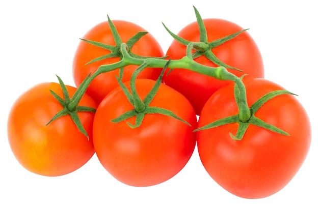 Tomate. branche de tomate. tomates isolées sur blanc. avec chemin de détourage.