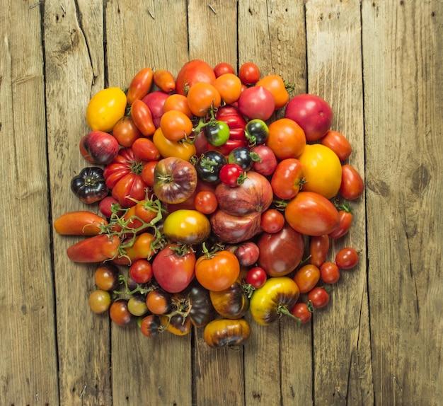 Tomate rouge sur la table. beaucoup de tomates sur table en bois. tomates de jardin bio mûres fraîches sur table en bois.