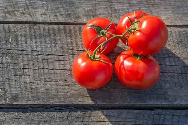 Tomates sur branche sur planche de bois. espace pour le texte.