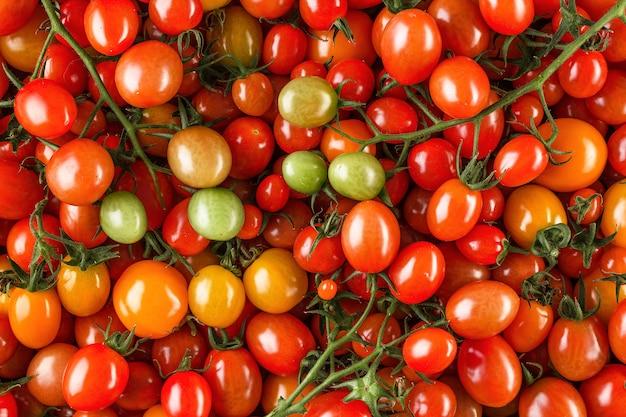 Tomates cerises biologiques fraîches comme toile de fond, gros plan.