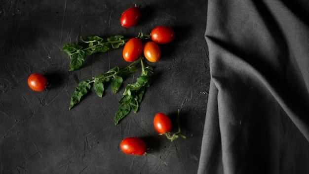 Tomates cerises sur feuilles sombres et vertes, vue du dessus