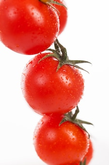 Tomates cerises fraîches sur une branche
