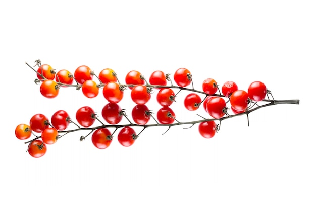 Tomates cerises rouges mûres sur fond blanc