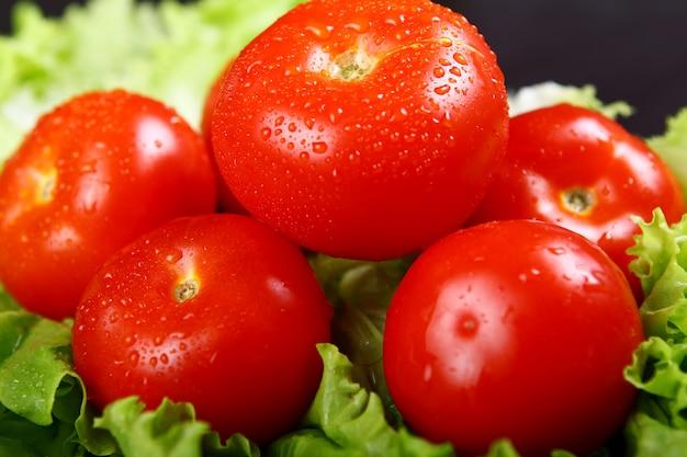 Tomates fraîches et humides
