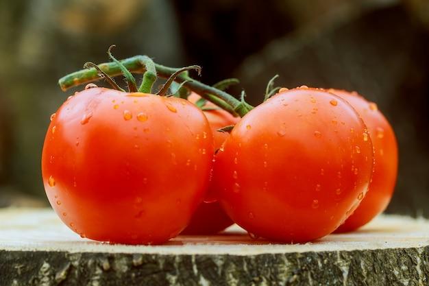 Tomates fraîches sur la table en bois