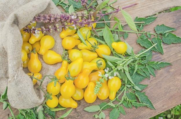 Tomates poires jaunes. aliments biologiques naturels sains