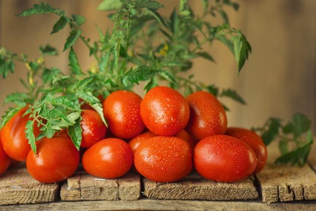 Tomates roma juteuses biologiques fraîches sur table