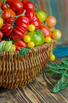 Tomates rouges biologiques dans un panier en bois