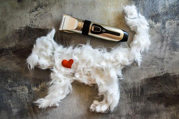 Tondeuse à cheveux et fourrure animale blanche. la laine est disposée en forme de chat. outil de travail, soins aux animaux, coupe de cheveux