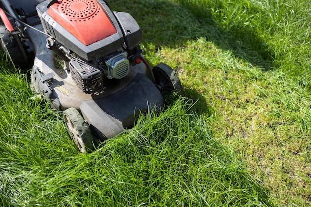 Tondeuse à essence tondant l'herbe