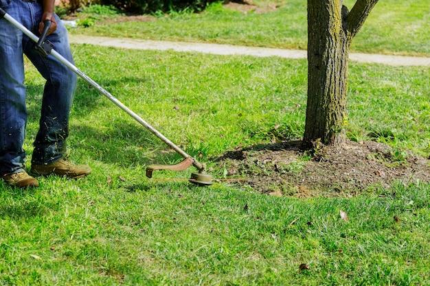 Une tondeuse à gazon tond de l'herbe fraîche et verte sur la pelouse à proximité, un travailleur municipal avec une tondeuse à gazon à la main.