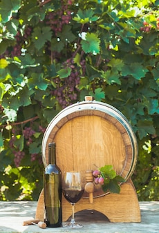 Le tonneau en bois avec du vin sur une table en plein air. culture viticole