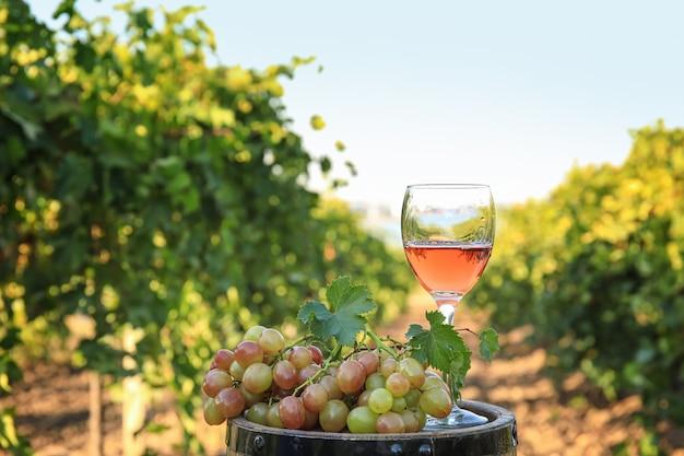 Tonneau, verre de vin et raisins mûrs dans le vignoble