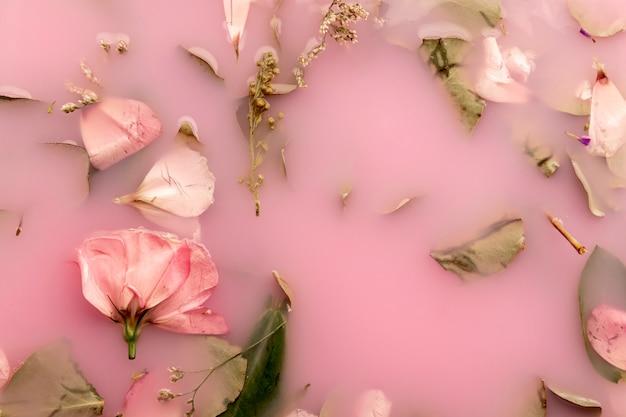 Top view roses roses dans l'eau colorée rose