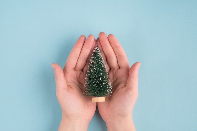 Topoverhead ci-dessus vue rapprochée photo de petit arbre jouet dans les mains des femmes isolées sur fond de couleur bleu pastel