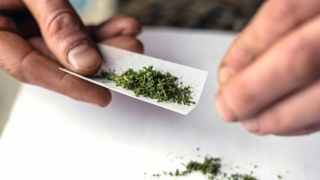 Tordre le montant avec de la marijuana médicale. gros plan de traitement de cannabis.