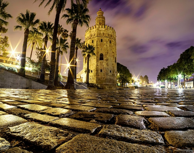 Torre del oro à séville en espagne. paysage urbain de nuit.