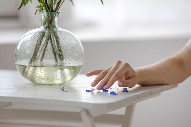 Touche de main de pétales, concept de salon de beauté