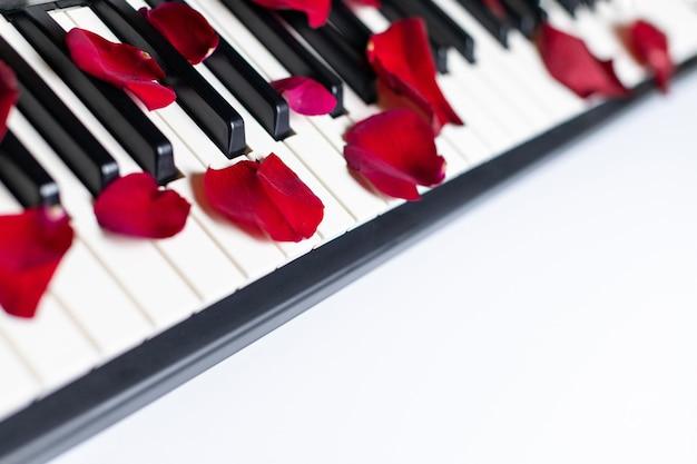 Touches du piano parsemées de pétales de roses, isolées, espace copie.