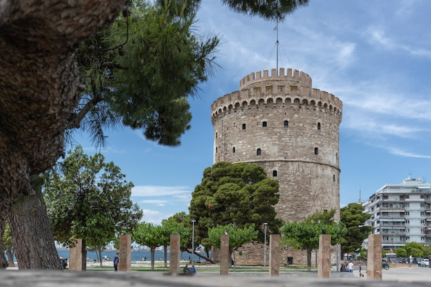 Tour blanche du patrimoine byzantin à thessalonique avec des arbres devant sous un grand pin