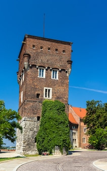 Tour du château royal de wawel à cracovie