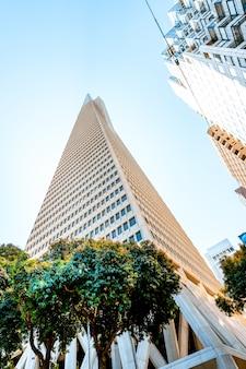 Tour transamerica au centre-ville de san francisco belle architecture d'un immeuble d'affaires