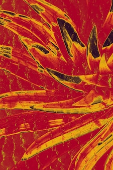 Tourbillon hallucinogène fou. l'abstraction, une fleur de couleur rouge