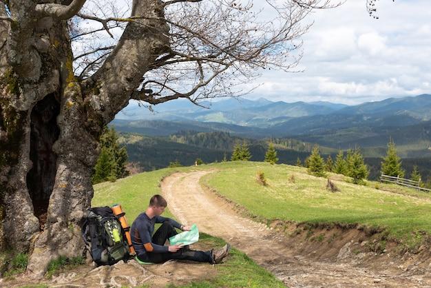Touriste lit une carte sous l'arbre par la route
