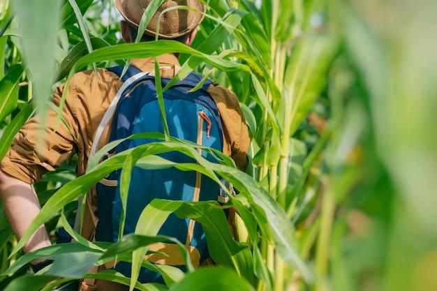 Un touriste masculin se promène dans un champ de maïs avec un sac à dos de voyage. concept sur le thème du tourisme.