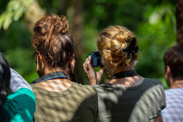 Les touristes dans le parc de conservation des animaux, une destination touristique en asie du sud-est, sandakan, sabah, bornéo, malaisie