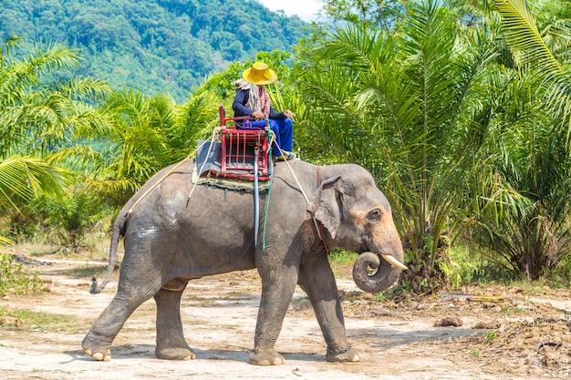 Touristes à dos d'éléphant en thaïlande