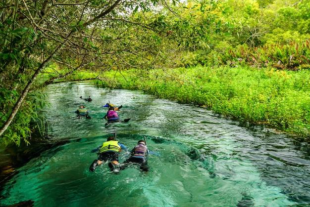 Les touristes flottant dans la rivière formoso bonito mato grosso do sul brésil