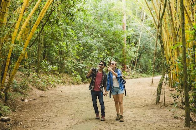 Les touristes regardent les arbres de bambou