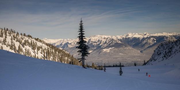 Touristes, ski, dans, neige, couvert, vallée, kicking, horse, resort, or, colombie britannique, ca