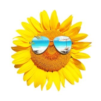 Tournesol drôle avec des lunettes de soleil sur fond blanc