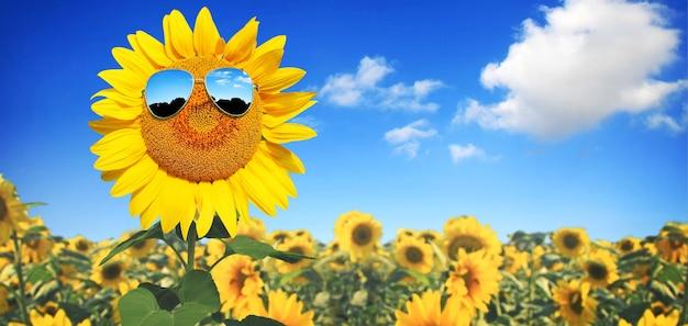 Tournesol portant des lunettes de soleil avec champ de tournesol sur ciel bleu nuageux et fond de lumière du soleil
