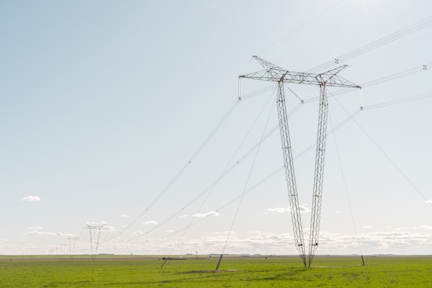Tours électriques d'affilée au milieu d'un champ agricole avec un ciel clair