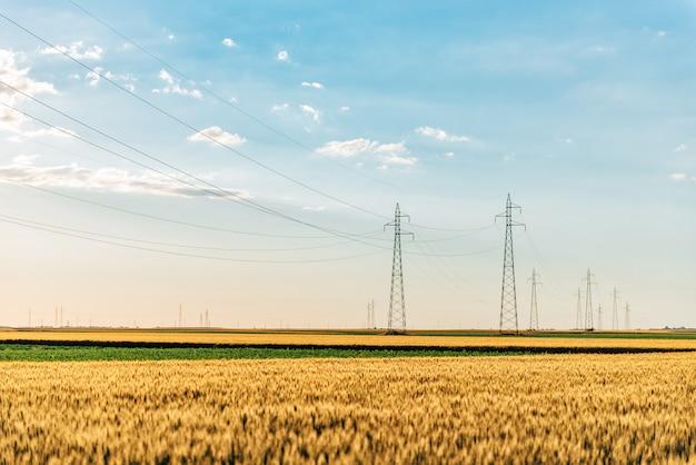 Tours d'énergie dans le champ de blé