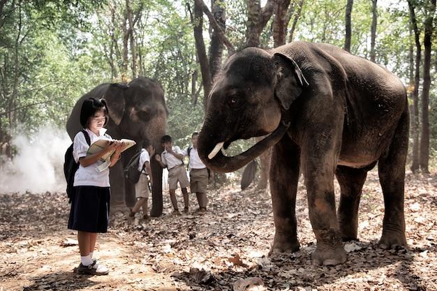 Toute la longueur des écoliers debout par l'éléphant en forêt
