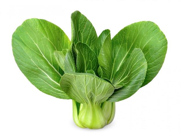 Tracé de détourage isolé de légumes bok choy