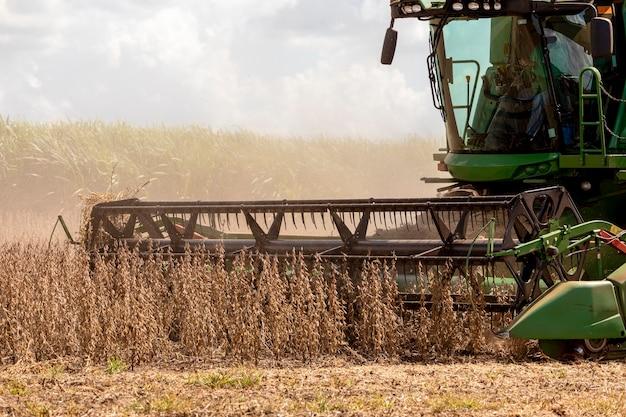 Tracteur agricole récolte du soja dans le domaine