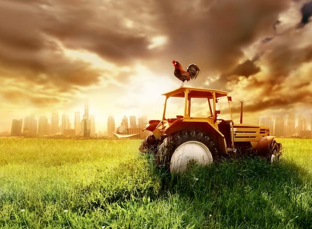 Tracteur sur un champ