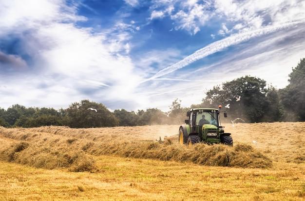 Tracteur, couper le foin en été contre le ciel bleu nuageux