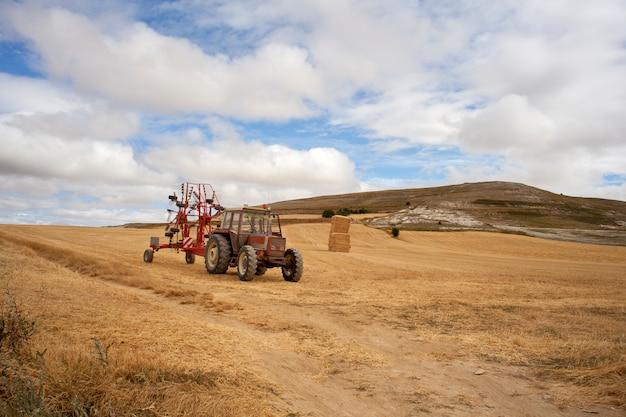 Tracteur dans un champ de maïs